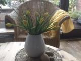 Friday-Flowerday – oder – Tulpen mitAusblick