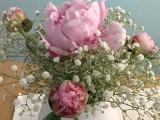 Friday-Flowerday – oder – Na geht doch: Pfingstrosen blühenauf
