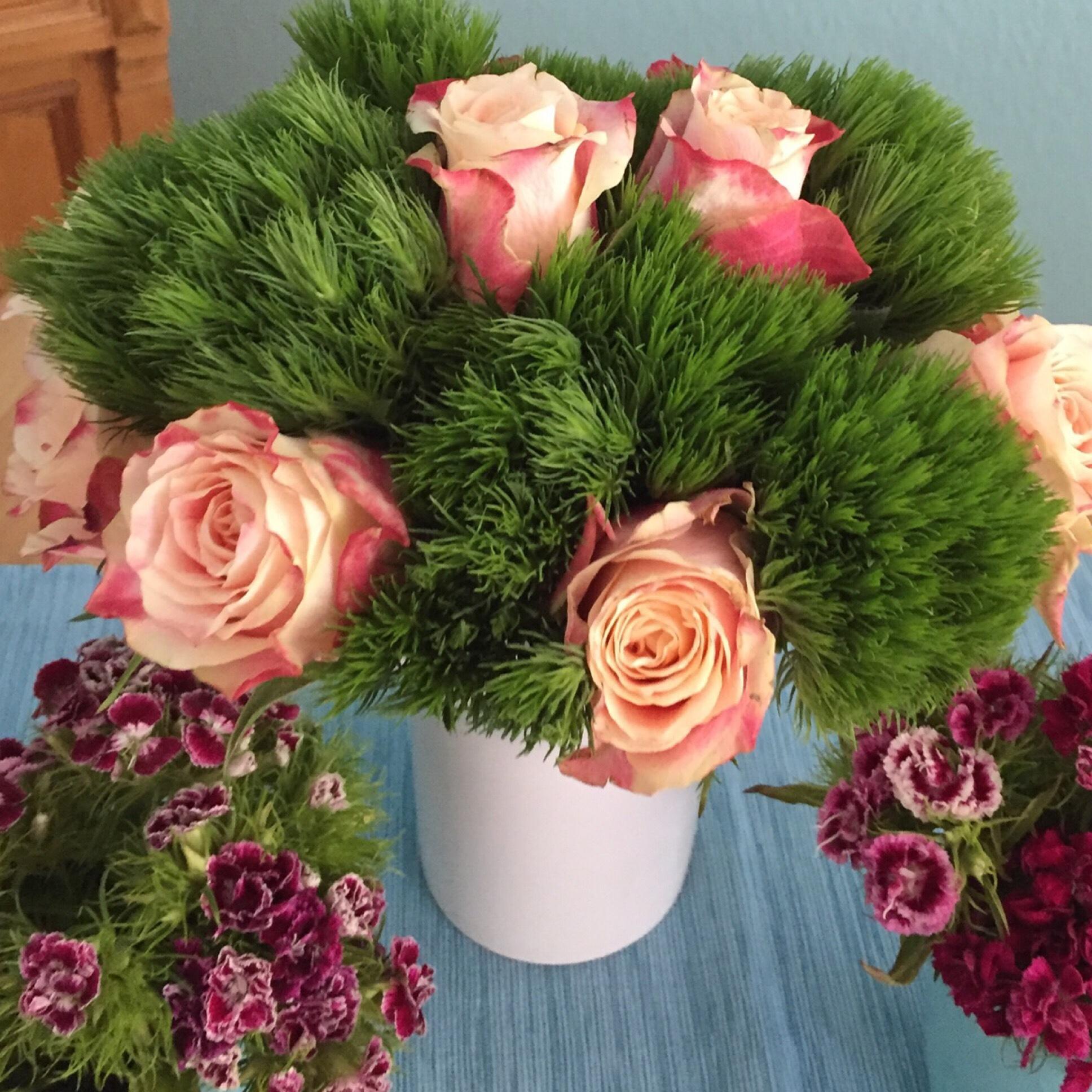 Friday-Flowerday – oder – Rosen und Nelken, eine gute Mischung