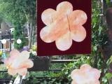 Blumen am Fenster – oder – Basteln mit den Kleinsten: Malen mitWasserfarbe