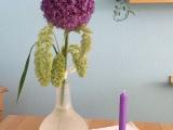 Friday-Flowerday – oder – Ich geb mir die Kugel:Allium