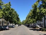 12tel Blick im Juni 2019 – oder – Parken unter blauemHimmel
