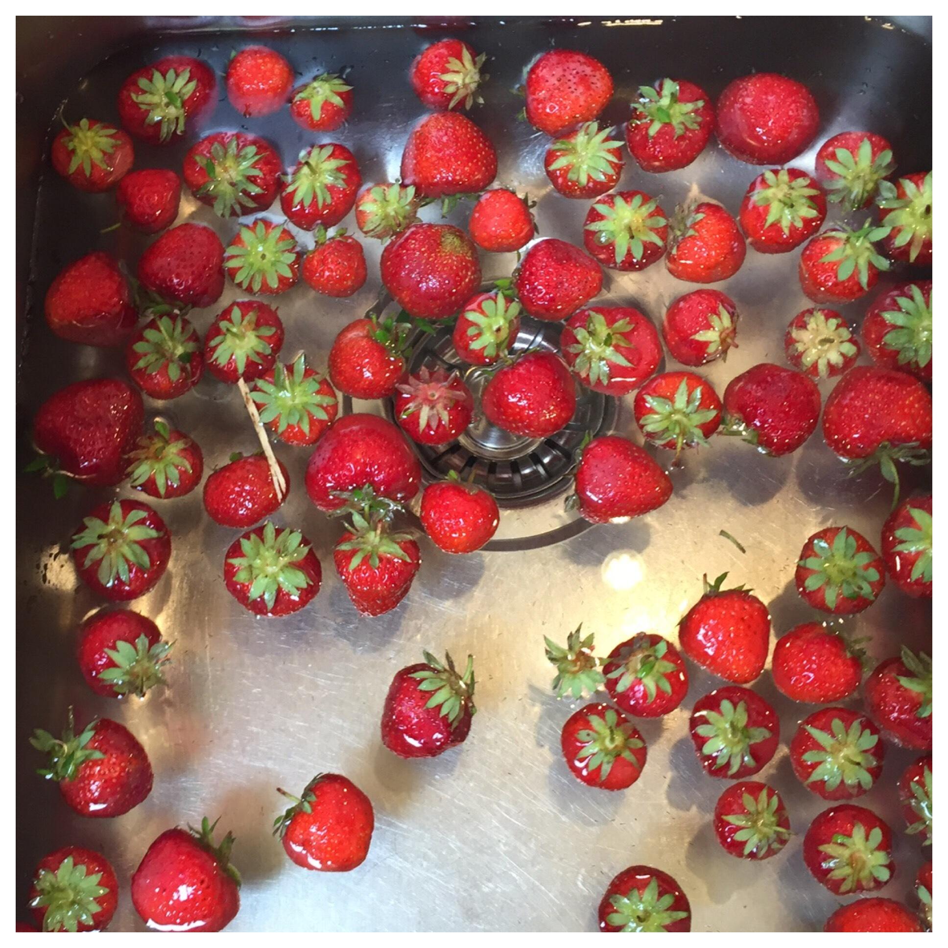 12 von 12 im Juli 2019 – oder – Von Erdbeeren, einer Kühlschrankputz-Session und Rotkohl im Sommer