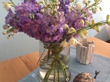 Friday-Flowerday – oder – Summerfeeling: Rittersporn undMeeresfarben