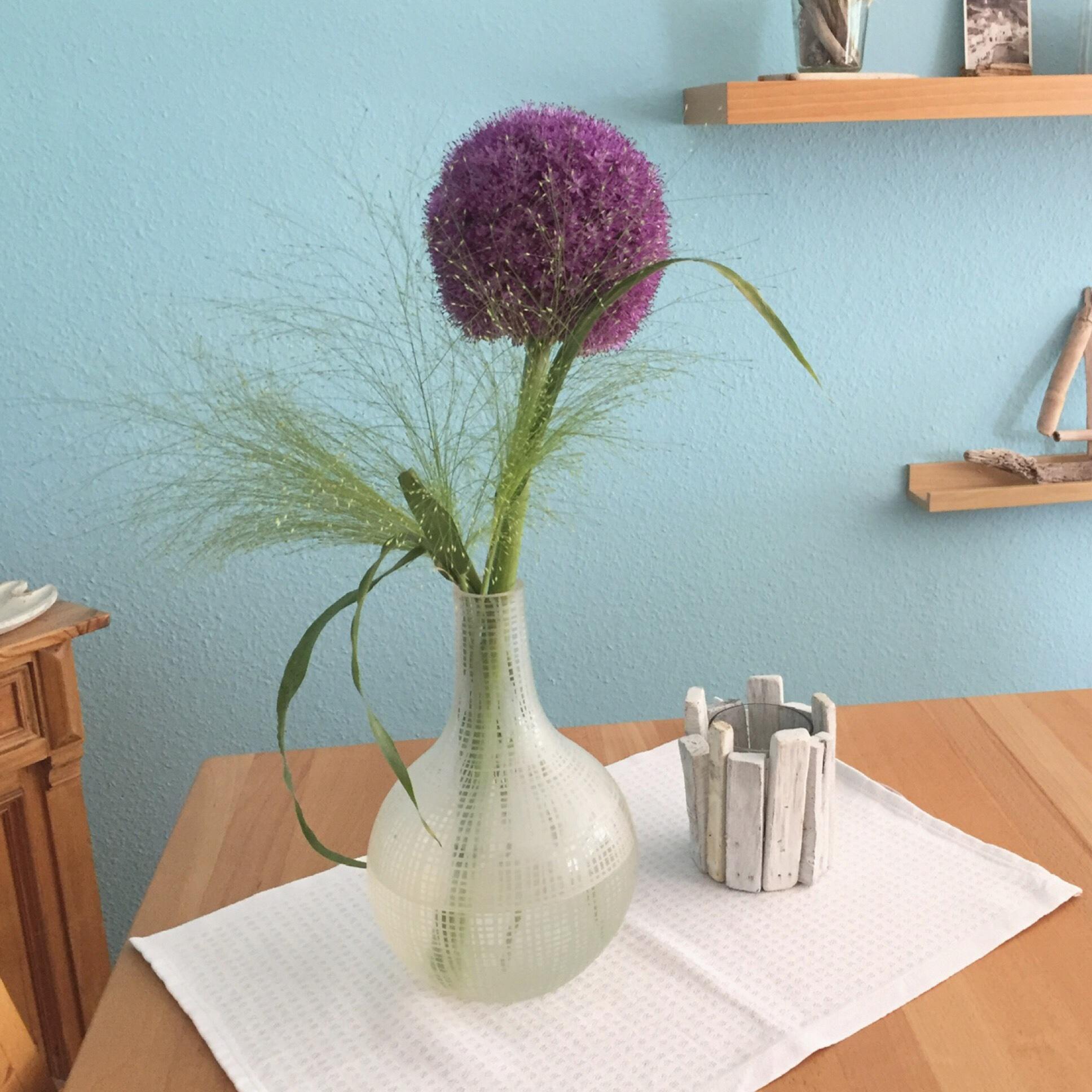 """Friday-Flowerday – oder – Eine Allium und ihr """"Fussvolk"""""""