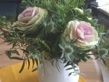 Friday-Flowerday – oder – Kappes, schön wieRosen