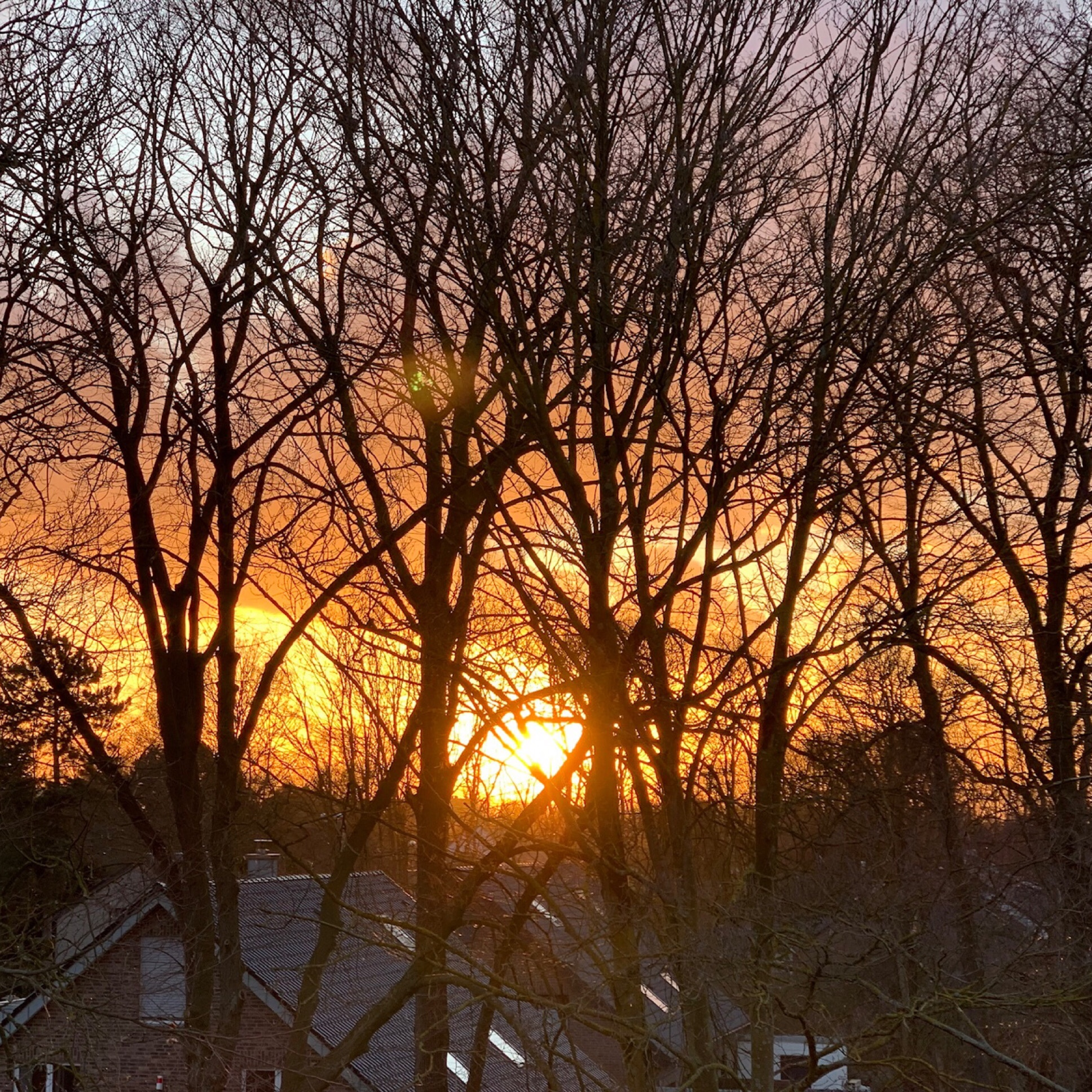 12 von 12 im Februar 2020 – oder –  Von Schwedenshopping, griechischem Essen und Sonne am Spätnachmittag