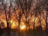 12 von 12 im Februar 2020 – oder –  Von Schwedenshopping, griechischem Essen und Sonne amSpätnachmittag