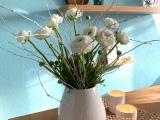 Friday-Flowerday – oder – Heute Ton in Ton:Weiß
