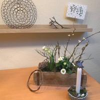 Friday-Flowerday - oder -  Frühling in der Kiste