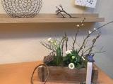 Friday-Flowerday – oder –  Frühling in derKiste