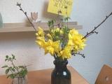 Friday-Flowerday – oder – Frühling,jetzt!!