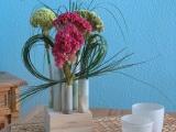 Friday-Flowerday – oder – In die Röhre gestellt:Hahnenkamm