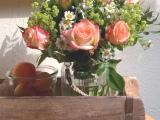 Friday-Flowerday – oder – Die erstenFreilandrosen