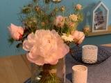 Friday-Flowerday – oder – Pfingstrosen#4