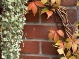 12 von 12 im Oktober – oder – Von herbstlichen Genüssen, Farbenspiel im Herbst und Weihnachtsausbruch