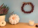 Herbstdekoration:Kürbis und Beeren – oder –  DIY: Kürbis verzieren und Kränzchenbinden ausBeeren