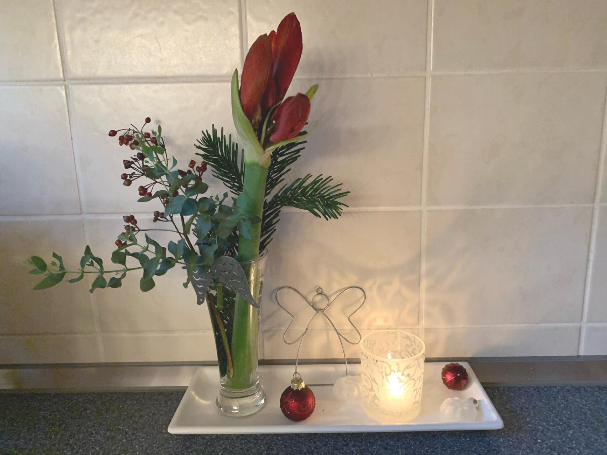 Friday-Flowerday – oder – Endlich: Amaryllis