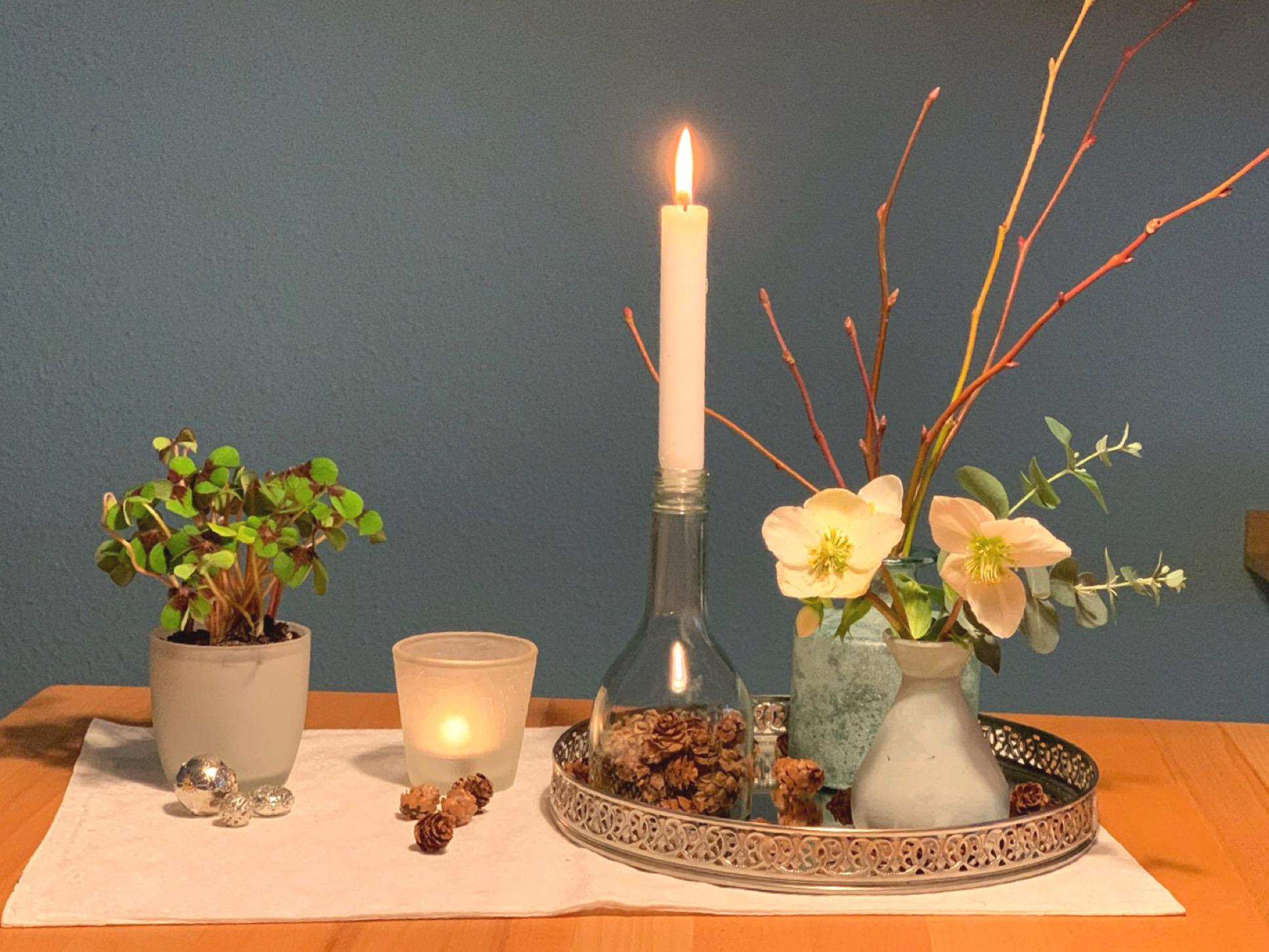 Friday-Flowerday – oder – Blümchen in diesen Zeiten