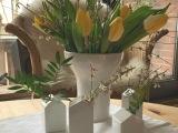 Friday-Flowerday – oder – Gelb gegen denWinterblues