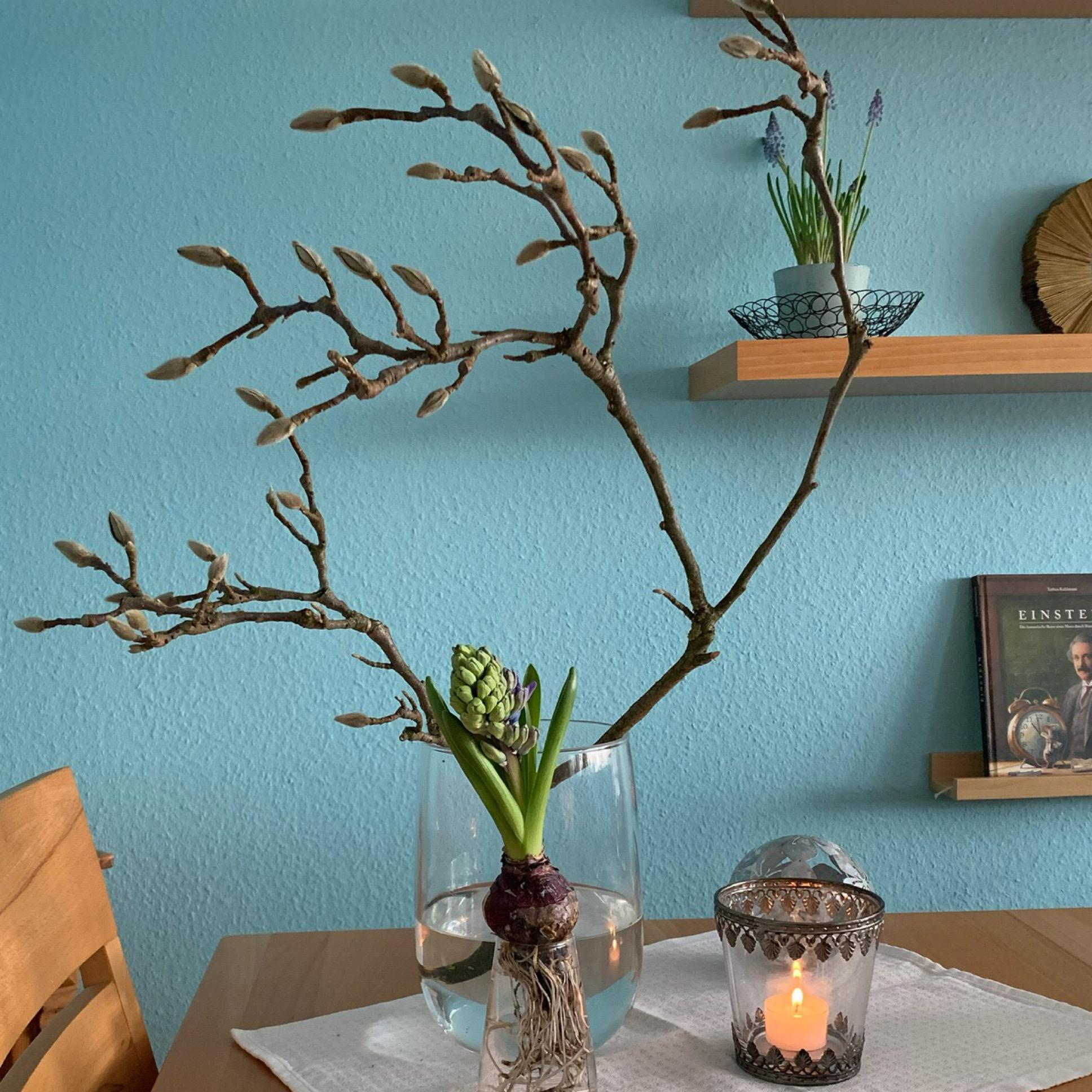Friday-Flowerday – oder – Magnolie und Hyazinth