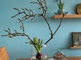 Friday-Flowerday – oder – Magnolie undHyazinth