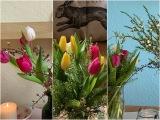Friday-Flowerday – oder – Drei Bund Tulpen und Grünzeug = Drei Vasen vollFrühling