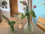 Friday-Flowerday – oder – Heut gibt es Blümchen inHöhenluft