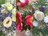 Friday-Flowerday – oder – Geburtstagsblümchen