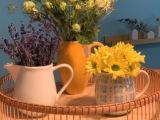 Friday-Flowerday – oder – VolleKanne