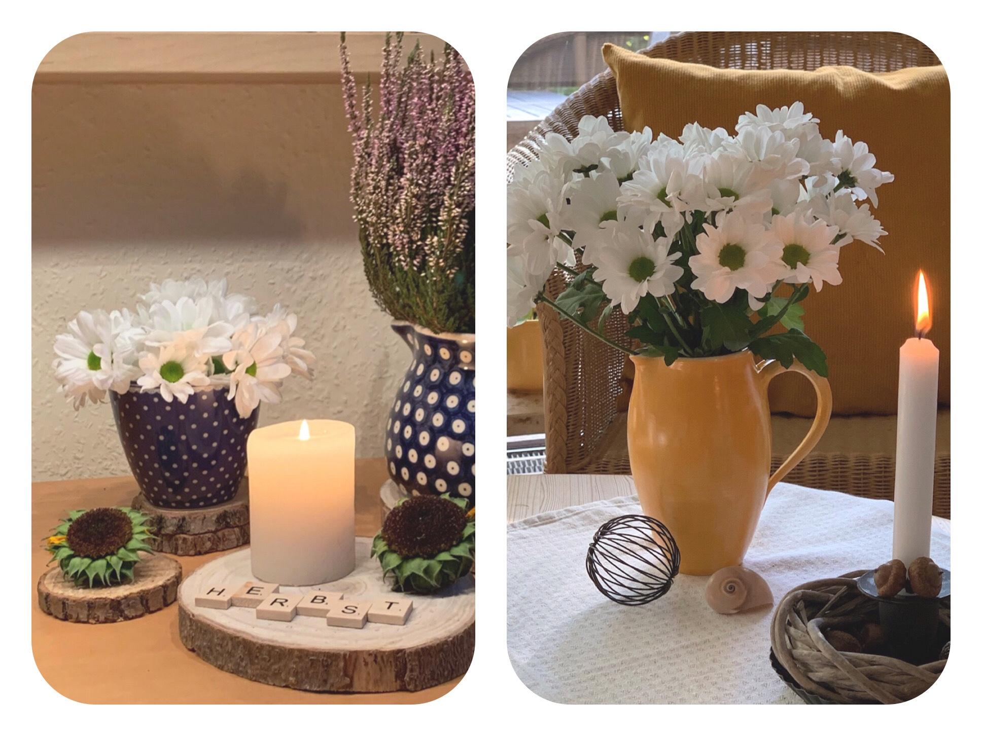 Friday-Flowerday – oder – Weiße Chrysanthemen mal zwei