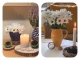 Friday-Flowerday – oder – Weiße Chrysanthemen malzwei