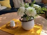 Friday-Flowerday – oder – Chrysanthemen, die herbstlichenDauerbrenner